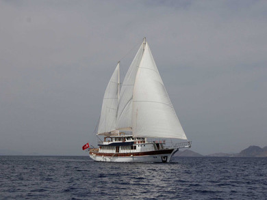 Charter gulet Gulet Athena in Mykonos - Cyclades Islands