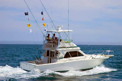 Charter motorboat Bertram 33 in Can Picafort - Majorca (Balearic Islands)