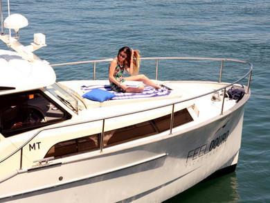 Charter motorboat Greenline 33 in  -
