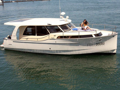Rental motorboat Greenline 33 in  -